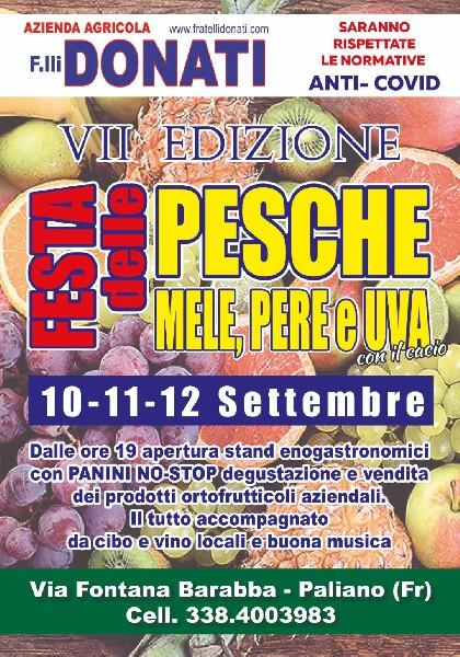 https://www.agenziaeventi.org/immagini_news/01-09-2021/paliano-l-azienda-agricola-f-lli-donati-presenta-la-vii-edizione-della-festa-delle-pesche-mele-pere-e-uva-con-il-cacio-2487-600.jpg